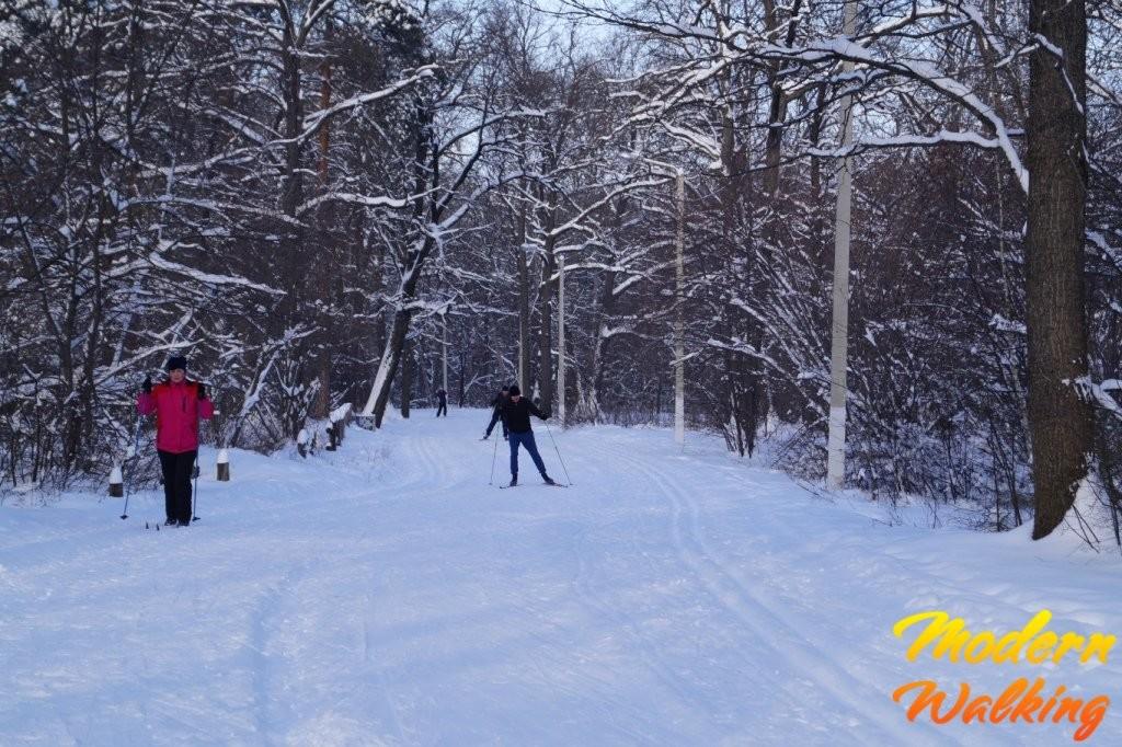 Катание на лыжах в Олимпике