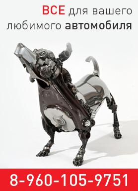 Автоаксессуары оптом в Воронеже