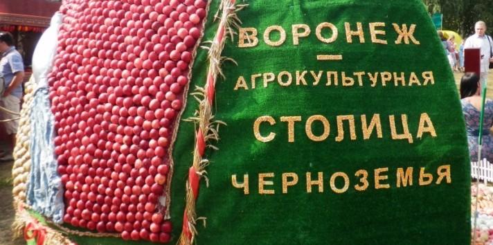 Воронеж-город агрокультурный